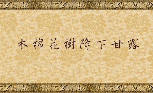 木棉花樹降下甘露.jpg