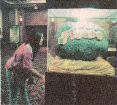美洲國家組織舉辦義雲高大師(H.H.第三世多杰羌佛)韻雕作品展-華盛頓新聞-6