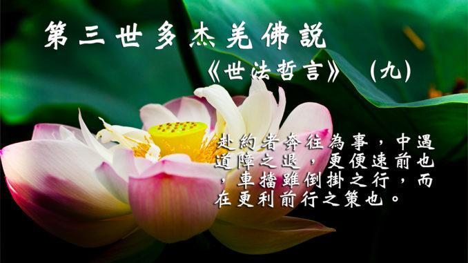 第三世多杰羌佛說《世法哲言》(九)