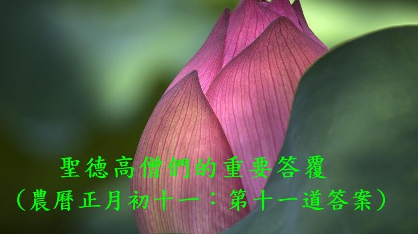 (農曆正月初十ㄧ:第十一道答案)