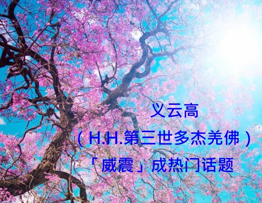 義雲高「威震」成熱門話題-1