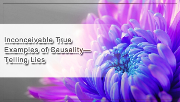 inconceivable-true-examples-of-causalitye