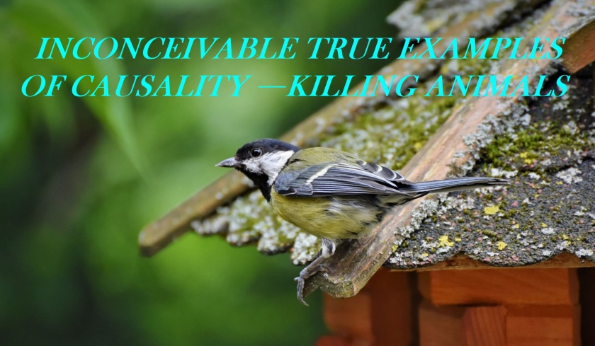 INCONCEIVABLE TRUE EXAMPLES OF CAUSALITY —KILLING ANIMALS