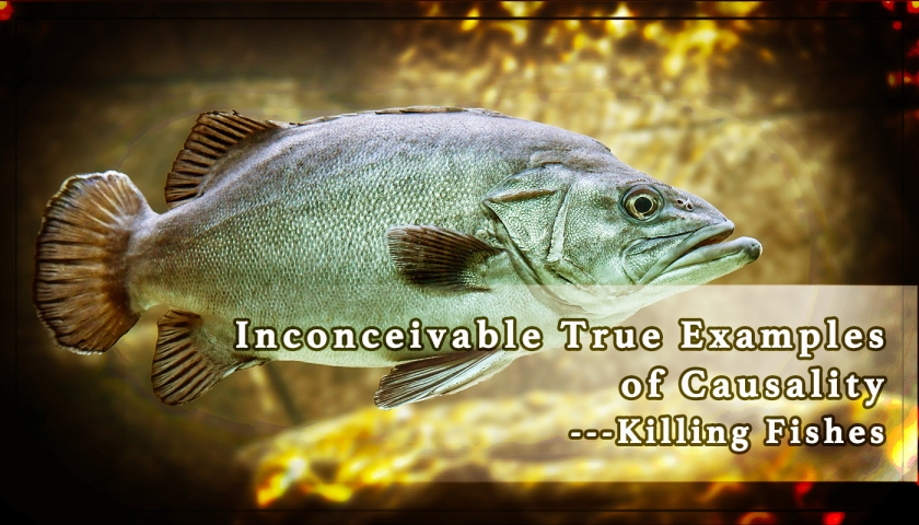 inconceivable-true-examples-of-causality-killing-fishes
