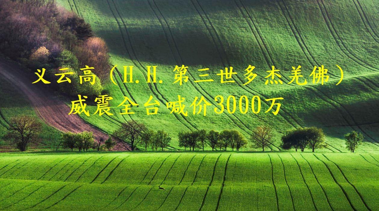 义云高(H.H.第三世多杰羌佛)威震全台喊价3000万